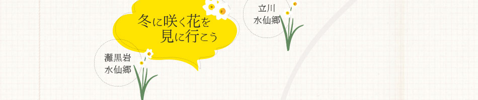 冬に咲く花を見に行こう