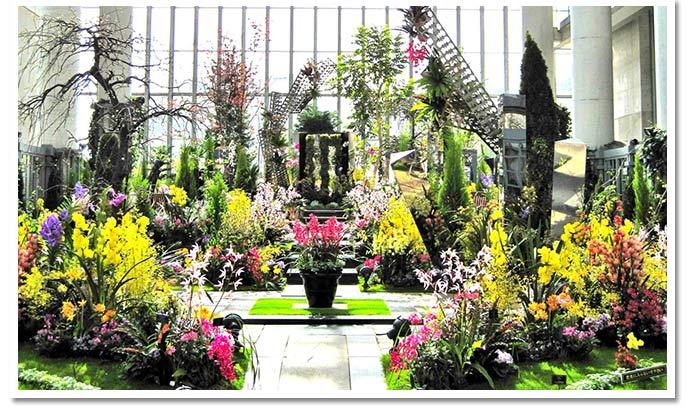 ユニークな植物がいっぱい!淡路夢舞台