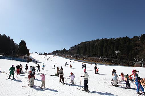 兵庫でスキーをもっとお手軽に!