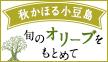 \2,500円クーポン配布中/