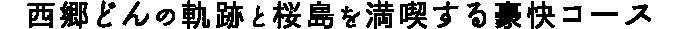 西郷どんの軌跡と桜島を満喫する豪快コース