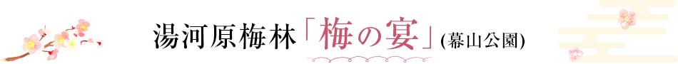 湯河原梅林「梅の宴」(幕山公園)