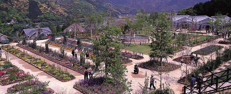 北川村 「モネの庭」マルモッタン