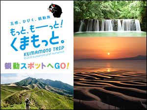 もっと、もーっと!くまもっと。KUMAMOTO TRIP