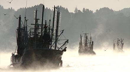 気仙沼漁港の気嵐(けあらし)