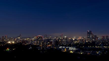 仙台城跡夜景