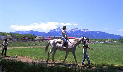 滝沢牧場(南牧村)