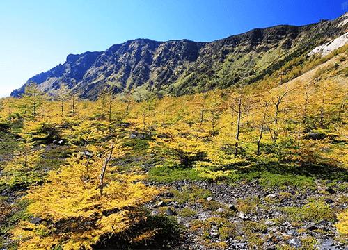 浅間山トレッキング