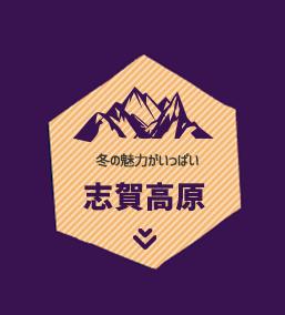 冬の魅力がいっぱい 志賀高原