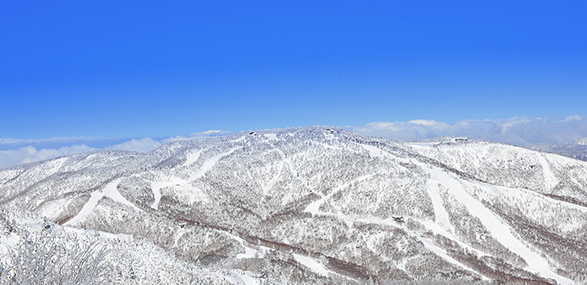 焼額山エリアイメージ