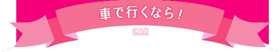 車で行くなら!