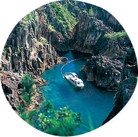 尖閣湾揚島遊園海中透視船