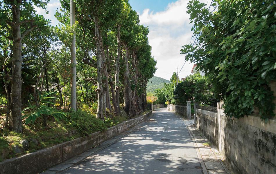 新垣さんのガイドを受けながら、ゆったりと流れる島の歴史と人々の暮らしに思いを馳せ