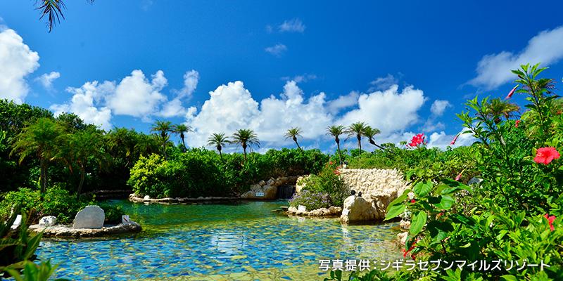 緑と花々の中でやすらぐ琥珀色の絶景温泉