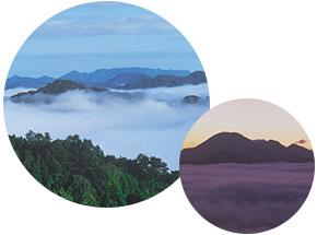 雲海ビューポイント