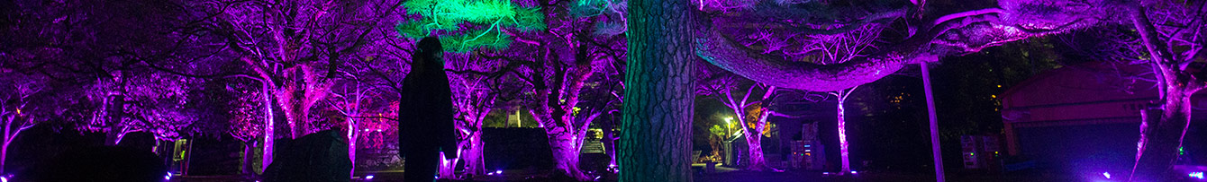 とくしまLED・デジタルアートフェスティバル