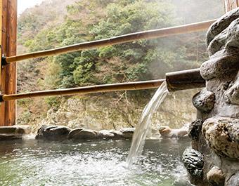 ケーブルカーでたどり着く秘湯・祖谷温泉