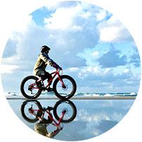 砂丘ファットバイク