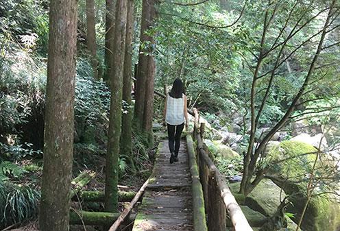 桑ノ木の滝ハイキング