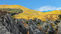 秋の秋吉台・秋芳洞の絶景へ
