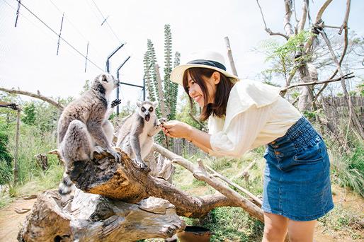 ときわ動物園【宇部市】