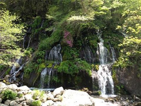 吐竜の滝周遊コース