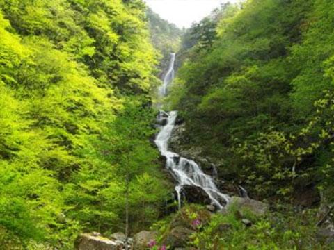 日本の滝100選・精進ヶ滝往復コース