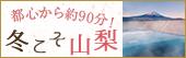 1,000円クーポン!