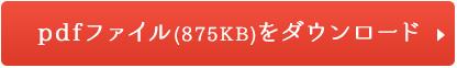 pdfファイル(875KB)をダウンロード