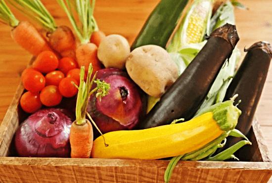 富士山麓の野菜
