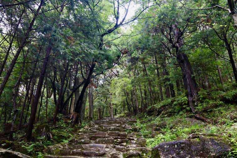 標高約80mの神倉山