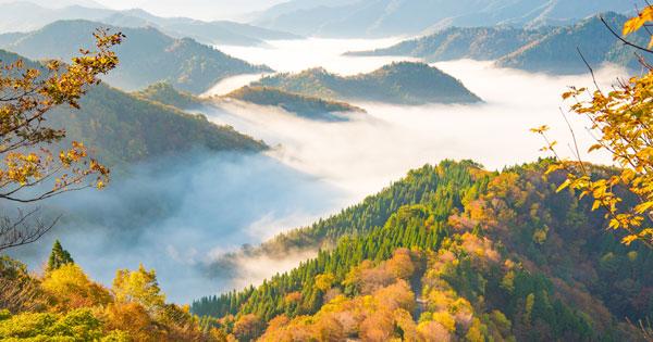 ドライブや日帰り旅行にもおすすめ!関西の絶景スポット34選