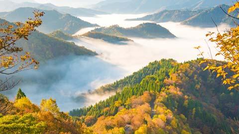 関西の絶景スポット34選!ドライブや旅行におすすめ!