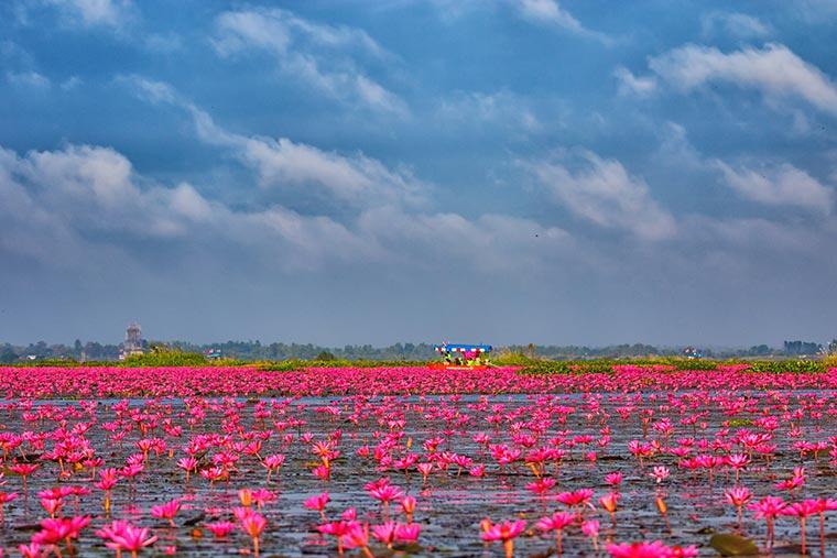 紅い睡蓮の海(タレー・ブア・デーン / 正式名:ノーンハーン)