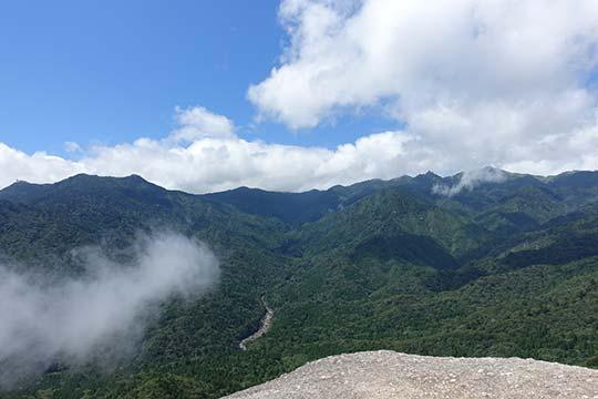 白谷雲水峡(屋久島)