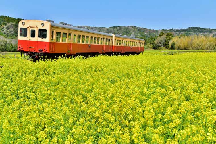 小湊鉄道・いすみ鉄道