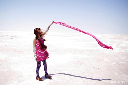 白砂漠(インド)