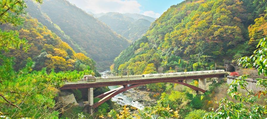 Stasiun Hozukyo