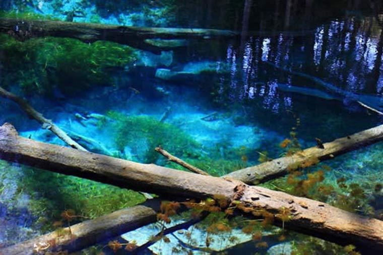 北海道 青の絶景 神の子池(かみのこいけ)