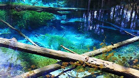 北海道「青の絶景」を体感しよう!夏休み旅行にもおすすめ