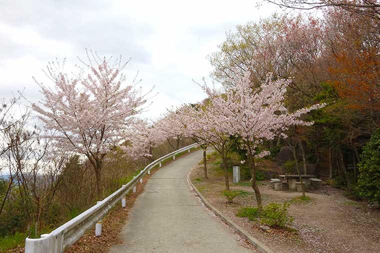 高屋神社本宮手前の道