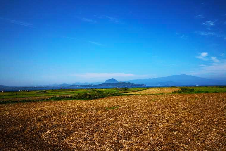 麦畑に囲まれたのどかな散策路から望む山房山と漢撃山