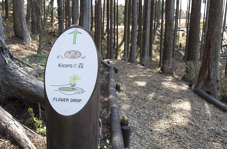 散歩コースkicoroの森
