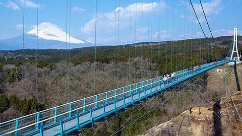 箱根からバスで行ける!日本最長 富士山を望む大吊橋「三島スカイウォーク」