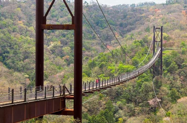 星のブランコ (交野吊橋)
