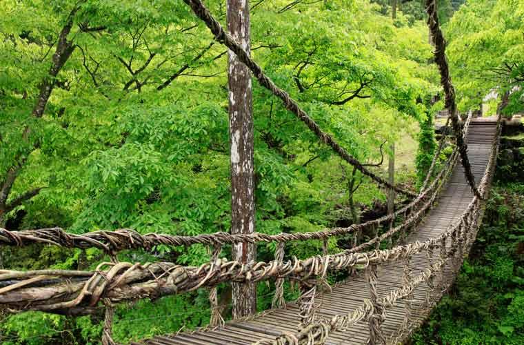 池田かずら橋