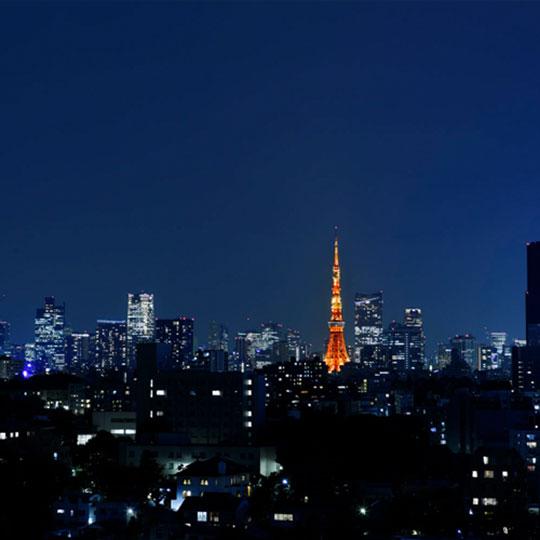 ザ・プリンス さくらタワー東京 眺望例