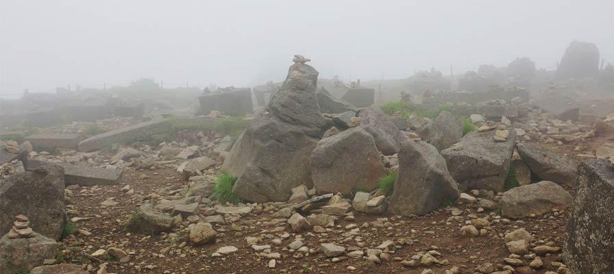 Jangan menjatuhkan tumpukan batu di Hutan Fuji (Hutan Aokigahara)