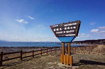 サラキ岬チューリップ園