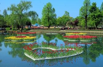 砺波チューリップ公園